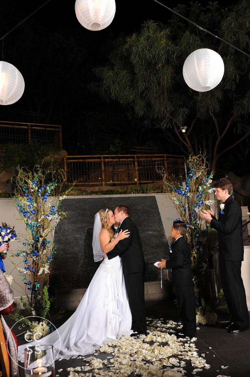 7-degrees-wedding-photos-30