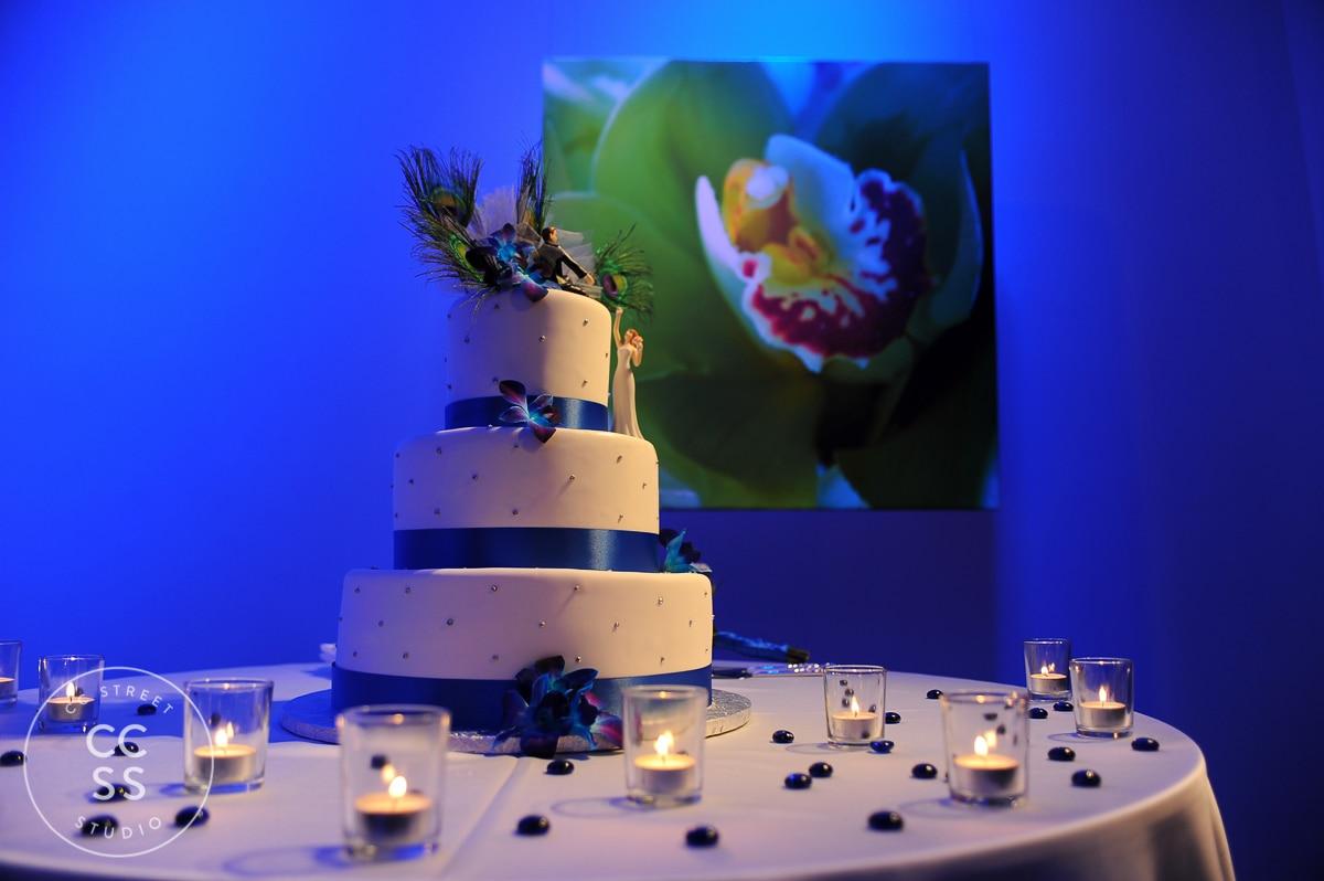7-degrees-wedding-photos-56