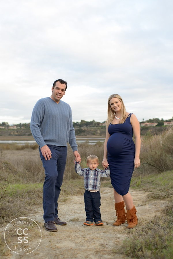 back-bay-maternity-photos-27