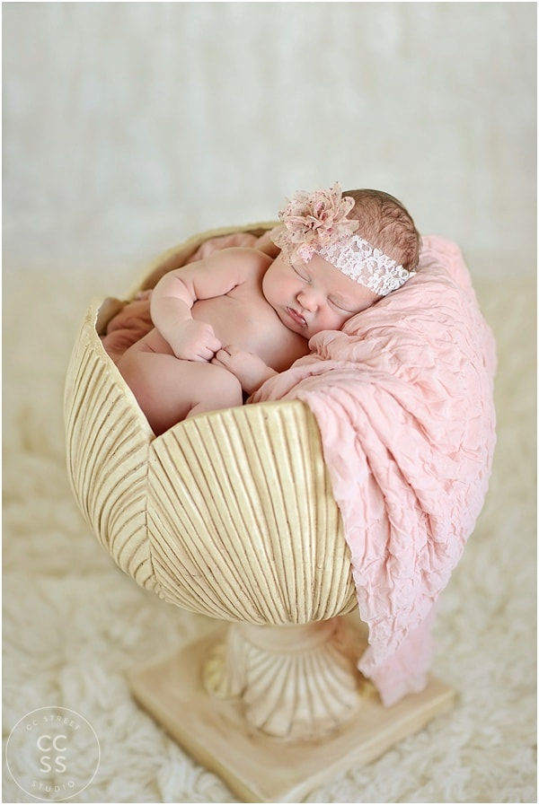 newborn-baby-prop-photography